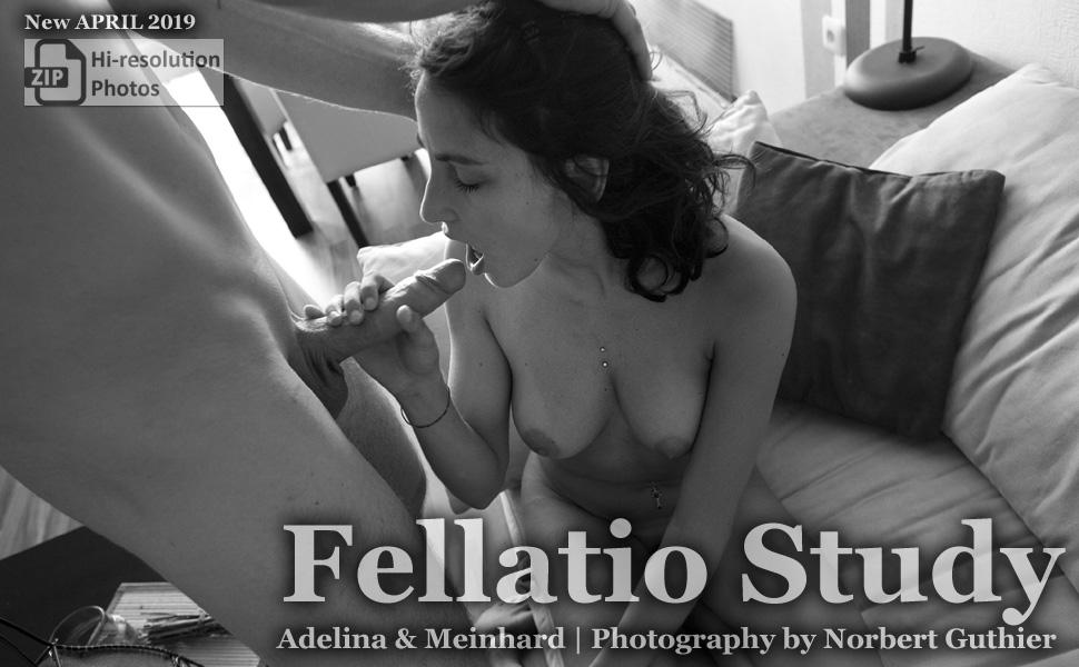 Fellatio Study by Noerbert Guthier